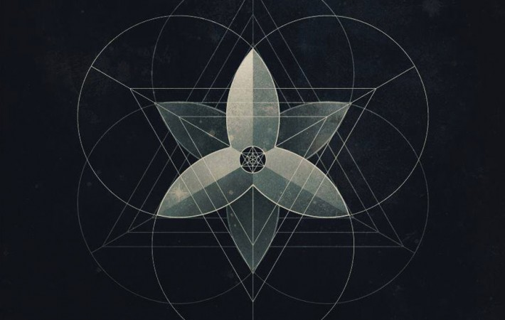 Black-Lotus-Experiment